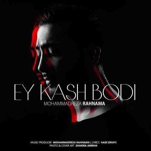 دانلود آهنگ جدید محمد رضا رهنما بنام ای کاش بودی