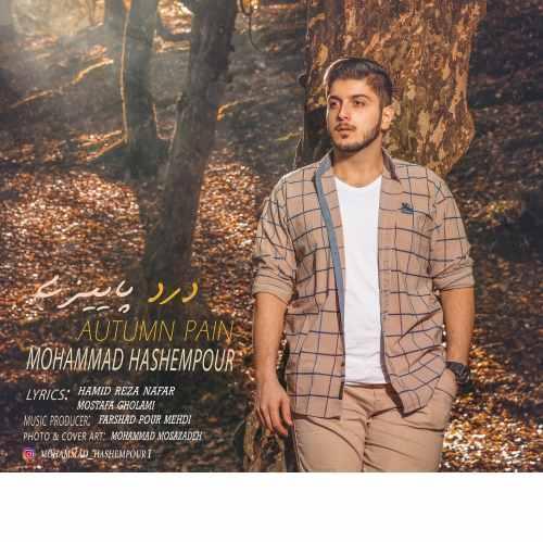 دانلود آهنگ جدید محمد هاشم پور به نام درد پاییزی