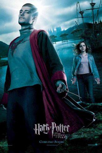 دانلود فیلم Harry Potter and the Goblet of Fire 2005 با کیفیت Full HD