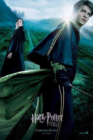 دانلود زیرنویس فارسی فیلم Harry Potter and the Goblet of Fire 2005