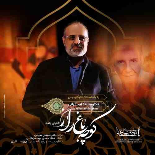 دانلود آهنگ جدید محمد اصفهانی به نام کوچه باغ راز عکس جدید محمد اصفهانی عکس ها و موزیک های جدید محمد اصفهانی
