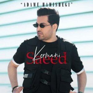 دانلود آهنگ من دارم میمیرم برات ولی تو خبر نداری سعید کرمانی